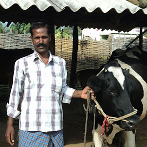 From Milking Cows to Leading Farmers